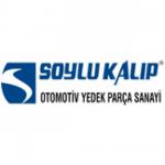 soylu-kalip_790x535_resize_thumb-150x150 Referanslar